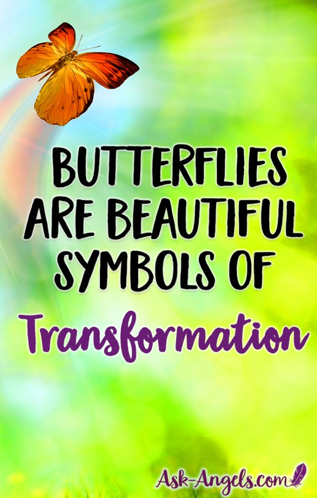 Seeing a butterfly is a beautiful sign of transformation. The life of butterflies is so symbolic of our own spiritual journey... Plus seeing their bright wings and light energy fluttering in nature has a way of bringing a smile and warming our spirit. Learn more about the meaning and symbolism now!