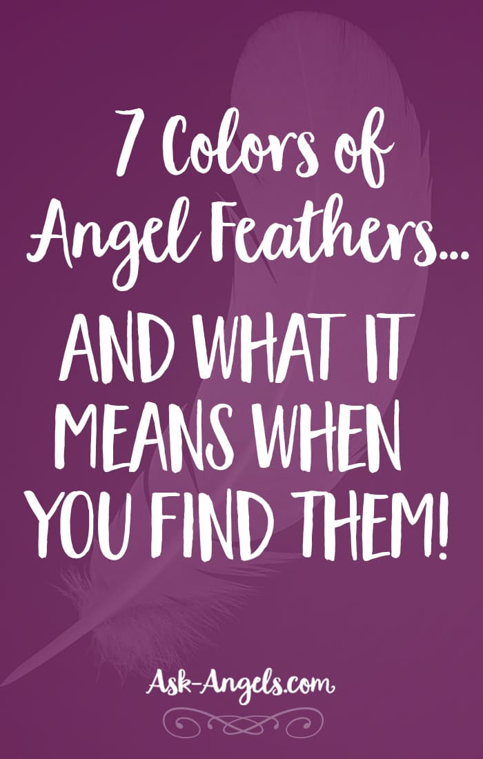 7 Colors of Angel Feathers and What It Means When You Find Them