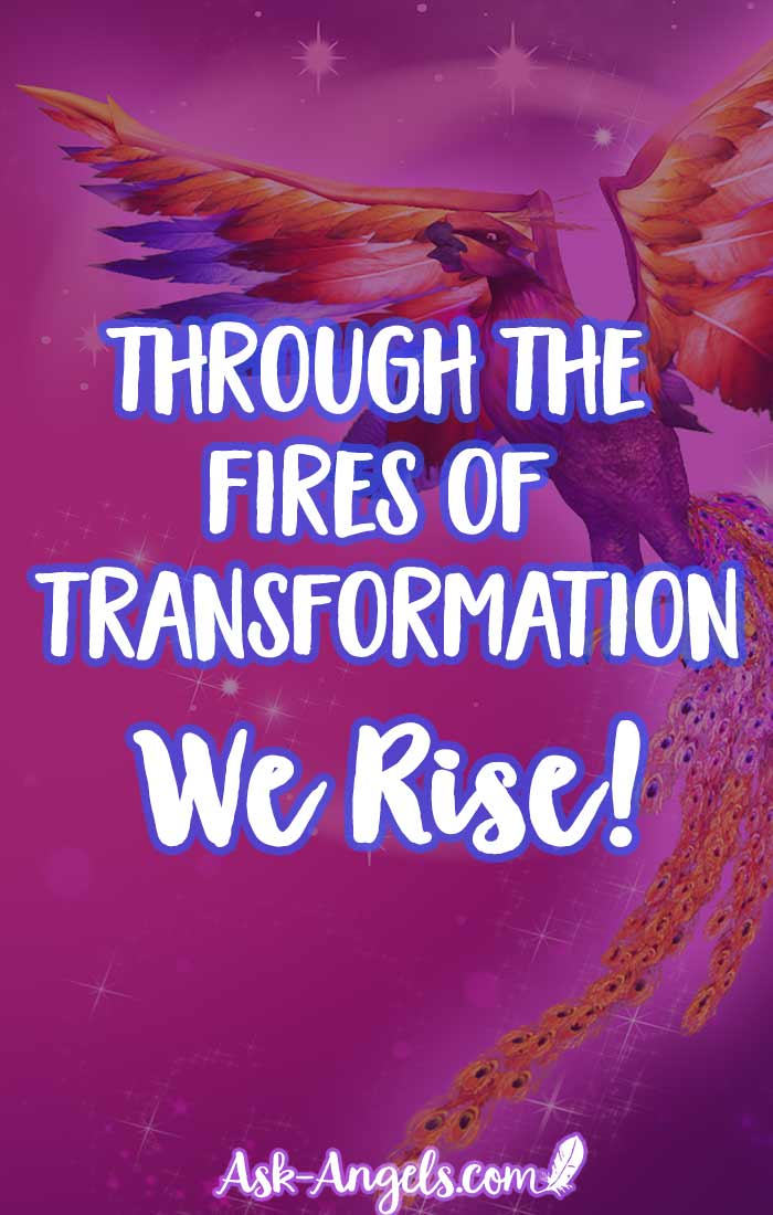 Through the fires of transformation we rise into the higher levels of our embodiment, authenticity, and light.