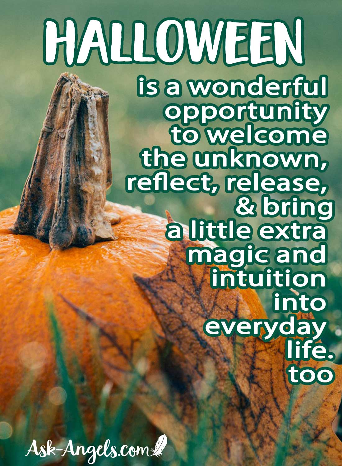Halloween as a great opportunity to welcome the unknown, reflect, release, and bring a little extra magic and intuition into everyday life.