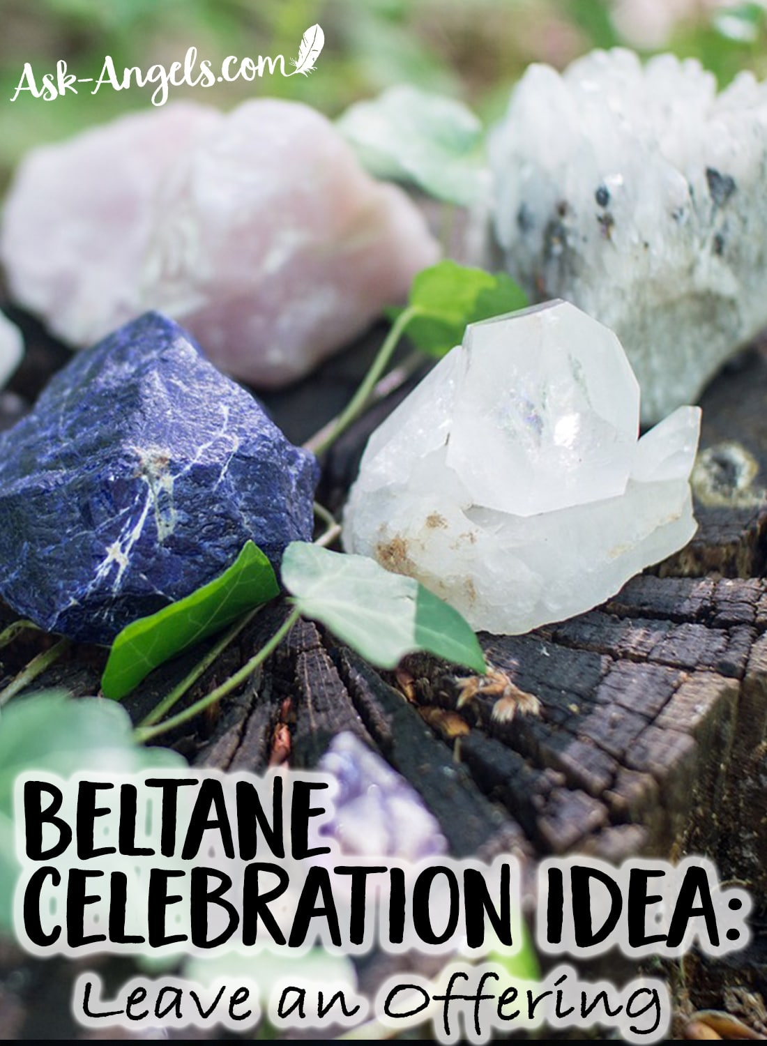 Beltane Celebration Idea - Leave an Offering for the Faeries or for Nature