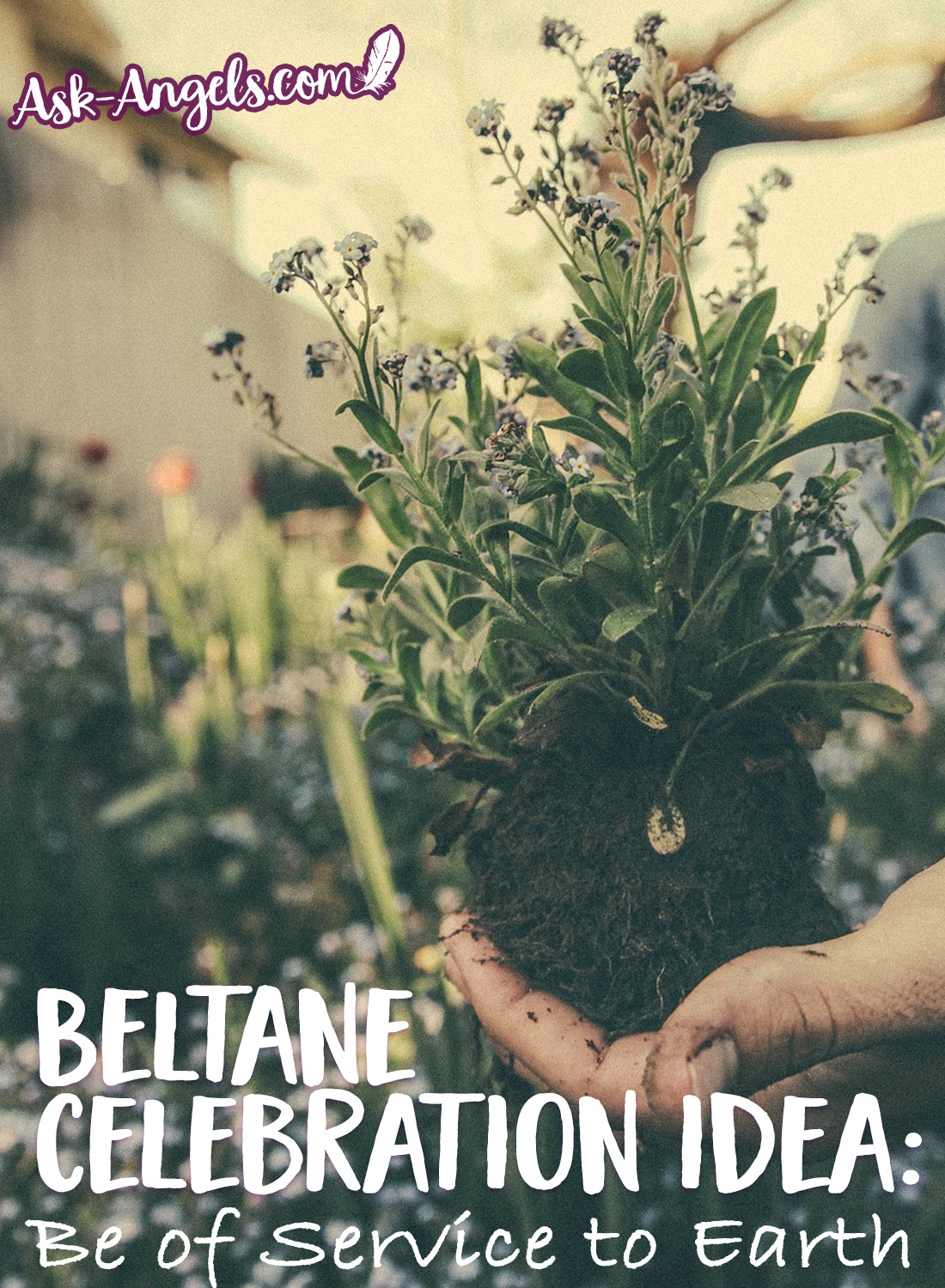 Beltane Celebration Idea - Be of Service to the Earth