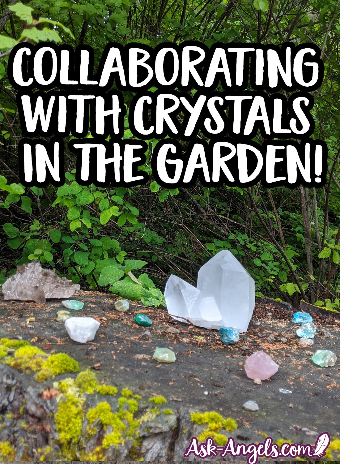 Collaborating with Crystals in the Garden