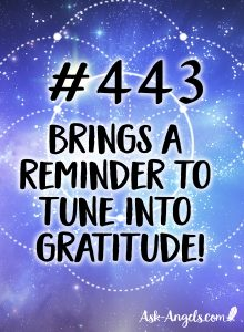 Angel Number 443 Meaning - A reminder to tune into gratitude now.